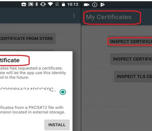 Intune Android for Work SCEP Certificate Deployment Issue