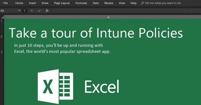 Intune Policy Configuration Spreadsheet