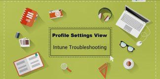 Configuration Profile Settings Intune Profile Per Setting View