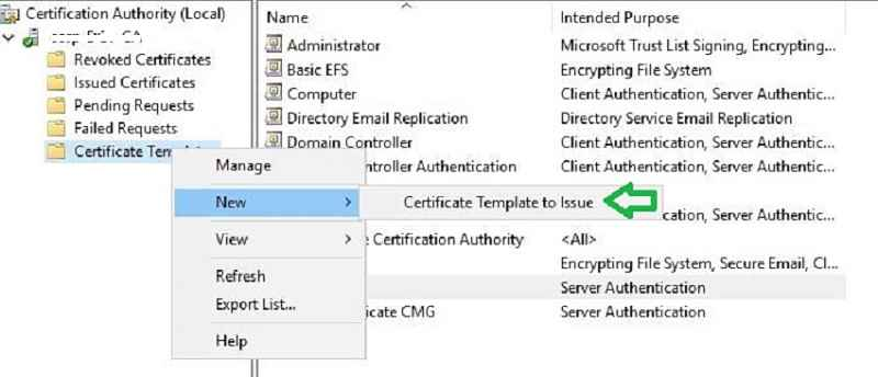 Server certificate CMG issue - New SCCM CMG Setup Guide