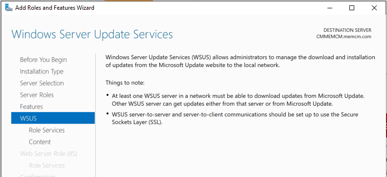 Windows Server Update Services Wizard