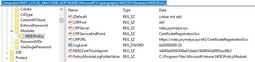 Intune SCEP Certificate Workflow - NDESPlugin Module Initialization - Information is retrieved from Registry
