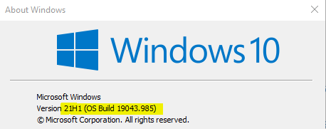 Group Policy Settings in Windows 10 21H1