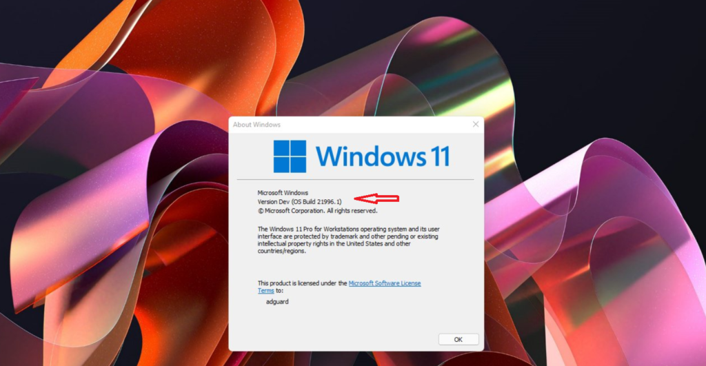 Windows 11 Version Build Numbers