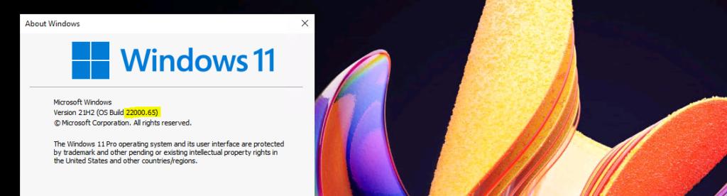 Latest Windows 11 update experience 1