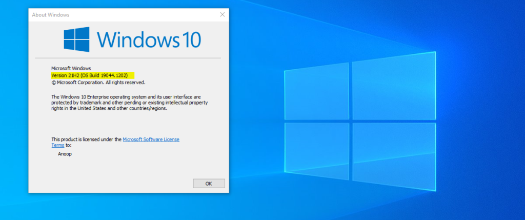 Windows 10 21H2 Update Options for Commercial Preview Build